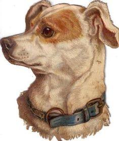 Victorian Die Cut Scrap Terrier Dog w Blue Collar c1880