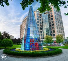 the Event town Stamford Connecticut, Burj Khalifa, Myrtle, New England, New York City, Things To Do, Flora, Environment, Magic