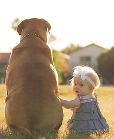 TOP 10 Heartwarming Photos Of Children With Their Pets ♥ Loved and pinned by Noah's Ark Mobile Vet Service Dogs And Kids, Big Dogs, Animals For Kids, Animals And Pets, Baby Animals, Cute Animals, Funny Animals, So Cute Baby, Cute Kids