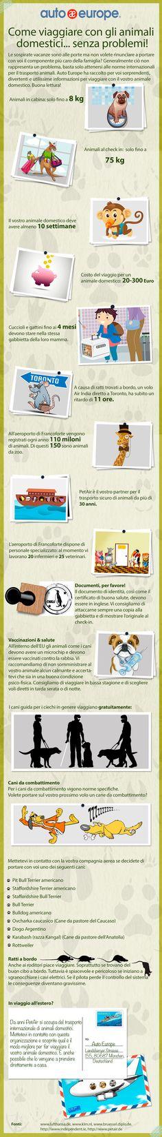 Infografica: In viaggio con gli animali - Consulta qui le altre infografiche di Auto Europe: http://www.autoeurope.it/go/infografiche/