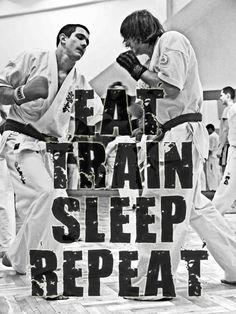 Eat, Train, Sleep, Repeat. :)