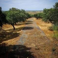 Antigua #carretera de #Extremadura. N-V. Subida del Almonte. #lascarreterasdeExtremadura