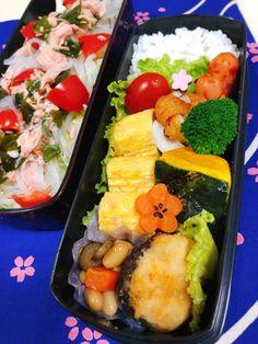Japanese box lunch,obento