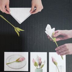 19 beautiful examples of paper art – Jinny Bay Best Candy, Napkin Folding, Napkin Holders, Diy Home Crafts, Decorative Accessories, Paper Art, Projects To Try, Flowers, Apple Recipes
