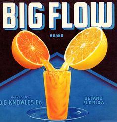 Big Flow Citrus Fruits. #crateart