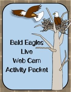 Classrooms across North America are experiencing a close-up view of the life of bald eagles thanks to live web cams. This 70-page packet is designed for students to learn about bald eagles while documenting their activity. There's no better way to learn about eagles than to watch them live!