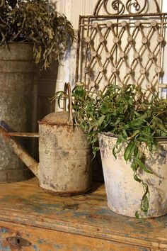 Old Zinc Watering Can...rusty...iron salvage piece...old painted & chipped bucket with a plant...