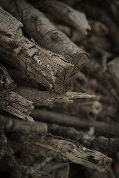 Old Firewood