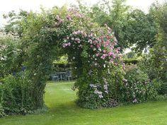 Une belle façon de souhaiter la bienvenue au jardin !