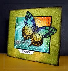 handmade card ... large butterfly ... gorgeous colors ... watercolor base in olive ... sponged panel collage in tourquoise and orange ... luv it!!