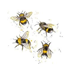 Muster Design / / Honey Bees & Bumble Bees – Amy Holliday Illustration Source by kikuyone Bee Painting, Painting & Drawing, Inspiration Art, Art Inspo, Illustration Tattoo, Bumble Bee Illustration, Watercolour Illustration, Illustrator, Bee Art
