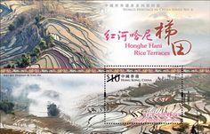 World Heritage site Honghe Hani Rice Terraces - Hongkong