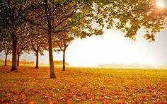 Resultado de imagen para paisajes  otoño en hd