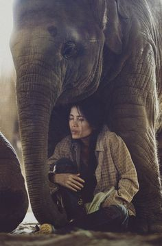 """they say an elephant never forgets. What they don't tell you is, you never forget an elephant."""" photo by David Terrazas Elephant Nature Park, Elephant Love, Elephant Walk, Elephant Spirit Animal, Elephant Gun, Amor Animal, Mundo Animal, Beautiful Creatures, Animals Beautiful"""
