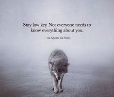 Wolf quotes, 2 am quotes, low key quotes, quotes of wisdom, good things . Wisdom Quotes, True Quotes, Great Quotes, Quotes To Live By, Motivational Quotes, Inspirational Quotes, Spiritual Quotes, Quotes Quotes, Quotes On Being Alone