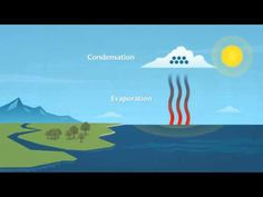 How does rain form and what is the water cycle? - YouTube