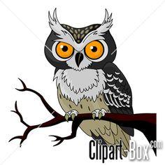CLIPART OWL CARTOON