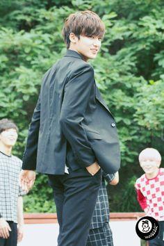 jeon wonwoo x kim mingyu x lee jihoon