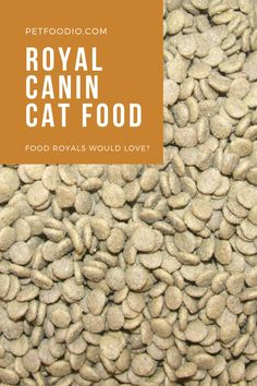 Royal Canin Cat Food: Food Royals Would Love? - PetFoodio.com Sources Of Carbohydrates, Sources Of Dietary Fiber, Protein Sources, Cat Food, Food Food, Dog Food Recipes, Chicken Recipes, Corn Gluten Meal, Beet Pulp