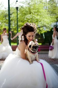 I sooo want to have my Pug Bella included in the Wedding pics! ♥