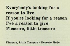 Depeche Mode - Pleasure Little Treasure