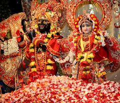 Radhastami Festival of Flowers 2013 at Kalachandji's Hare Krishna Temple in Dallas (133 photos)