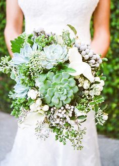 Succulents, lots of texture, natural looking/ multiple colors of green. I also like the lighter color plants mixed in.