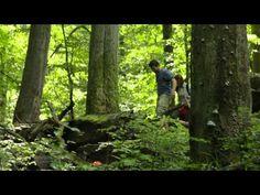 Bükki Nemzeti Park - YouTube Youtube, National Parks, World, The World, Youtubers, Youtube Movies