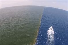 myngoc The Gulf of Alaska, where to bodies of water meet but do not mix together.