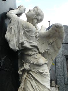 angels of stone from the Recoleta's Cemetery - Buenos Aires