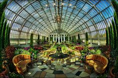 """sunken garden como park zoo conservatory by Dan Anderson Como Park , St. This is one of my favorite places in the entire world , after this front room you sink down into the atrium """"think. Como Conservatory, Beautiful World, Beautiful Places, Lovely Things, Beautiful Gardens, Minnesota, Places Around The World, Around The Worlds, Como Zoo"""