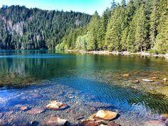 Cerne jezero, Sumava Prague, European Countries, Czech Republic, Amazing Places, Castles, The Good Place, Mountains, Park, Nature