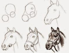 drawings - New Sites Cool Art Drawings, Horse Drawings, Pencil Art Drawings, Art Drawings Sketches, Easy Drawings, Animal Drawings, Drawing Art, Horse Sketch, Animal Sketches