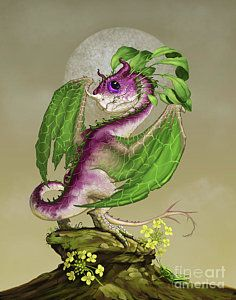 Turnip Digital Art - Turnip Dragon by Stanley Morrison Tiny Dragon, Dragon Horse, Dragon Art, Dragon Wing, Magical Creatures, Fantasy Creatures, Dragon Series, Dragon Pictures, Witch Pictures