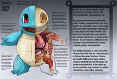 Christopher Stoll's illustrations of realistic Pokémon anatomy are horrifying. You won't be able to unsee Bulbasaur's too real plant symbiosis.