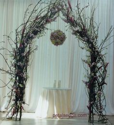 Rustic Wedding Arches | Can anyone help me find a way to do this? - Project Wedding Forums