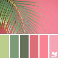 newest pics summer color palette colour schemes popular me : What an incredible day! COLOURlovers color palette software is bringing you our best picks of color palettes that'll take your breath away. Scheme Color, Color Schemes Colour Palettes, Paint Color Schemes, Living Room Color Schemes, Colour Pallete, Color Combinations, Summer Color Palettes, Colour Trends, Summer Colors