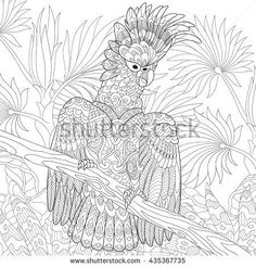 Zentangle stylized cartoon cockatoo parrot in tropical forest jungle. Hand drawn sketch for adult antistress coloring page, T-shirt emblem, logo, tattoo with doodle, zentangle, floral design elements.