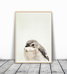 Scandinavian Print, Nursery Bird Print, Poster Scandinavian, Animal Photo prints, Bird Photography, Scandinavian Art, Minimalist Art, Nordic Print, Nursery Art Print, Nursery Animal, Wall Print, 8x10. MotivatedWallArt offers prints on a variety of themes, which gives a modern look to your home. This image is printed on 260 GSM quality photo paper with a glossy finish, and mailed in cardboard mailer envelope. The size is 8 x 10 inch and printed to the edge. Please note that frame is not...