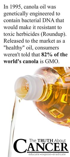 We were all told to use Canola Oi…and now it's been scientifically linked to a major inflammation in the body.   This is The Truth About Cancer - join us!