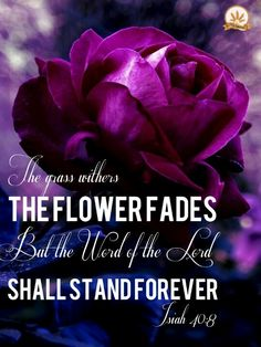 The grass withers, the flowers fade but the word of the Lord shall stand forever. -Isaiah 40:8 APOSTOLIC / PENTECOSTAL/ /CHRISTIAN /ACTS 2:38