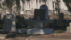 Save Our Cemeteries would like to share this update regarding the recent theft of remains in Holt Cemetery: WWL-TV (New Orleans) covers the latest developments in this news story. Thank you all for your concern and support regarding this issue!  Save Our Cemeteries is aware of the recent theft of remains in Holt Cemetery and has contacted the proper state authorities. They are launching an investigation. Thank you for your emails regarding the issue and for your support!