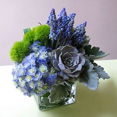 Blue & White Hydrangea, Succulent Plant, Dusty Miller Leaves