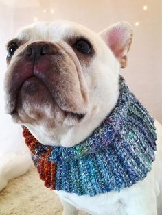 Softest Colorful Heather Cotton and Silk Blend Handmade Dog  HowlinCowls.com and HandmadeHowlinCowls.com Tapered to fit with love in each stitch. Made for all breeds. Please see website for more details Pets, weddings events beach pawty anytime cowl frenchies furbaby