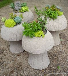 Hypertufa mushrooms. This would be great with Petunas!!! Next year!!