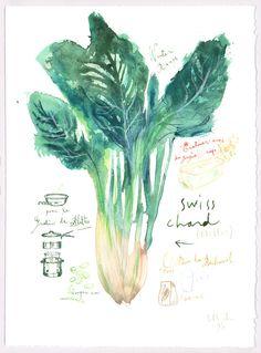 Winter recipe - Swiss chard gratin recipe - Original illustration - Food art - The kitchen collection. $68.00, via Etsy.