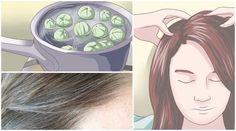 """Abbiamo già parlato di come i capelli bianchi possono diventare un """"problema"""" che prima o poi tutti dobbiamo affrontare. C'è a chi spuntano prima e a chi dopo, ma il punto è: una volta comparsi, cosa fare? Molti optano istintivamente nell'effettuare tinte e colorazioni con prodotti commerciali, che come sappiamo contengono sostanze chimiche non di poco conto e che proprio bene ai nostri capelli non fanno! Perché optare quindi per rimedi naturali? Qui si seguito descriveremo un metodo nat..."""
