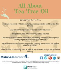 Tea tree oil has natural antibacterial and anti-fungal properties, and is an amazing acne fighter.