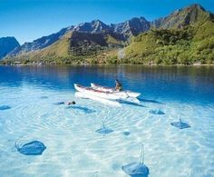 Crystal clear water with stingrays