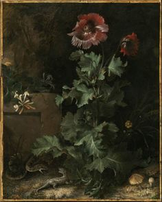 Continuing our look at plants on the ground, let's look a bit further back into art history then we usually do here at UPR. In the 17th century,…